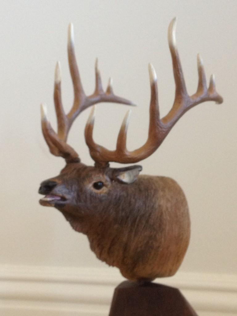 Bull-Elk-Bust