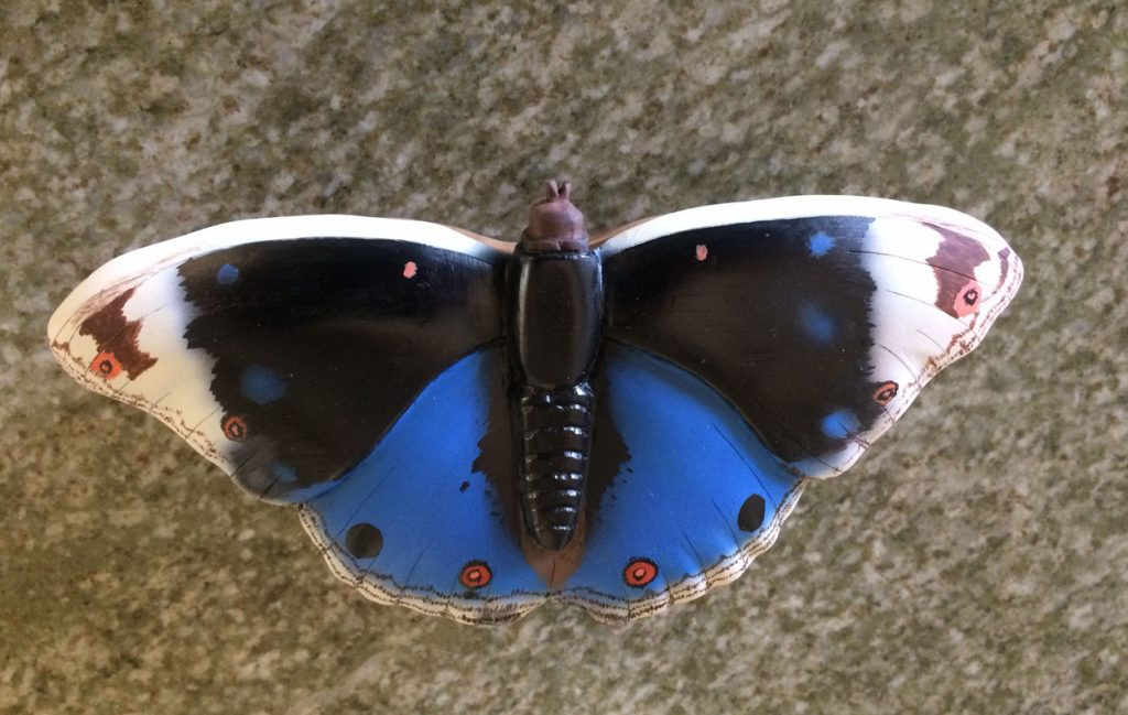 bluepansey-butterfly-box1a